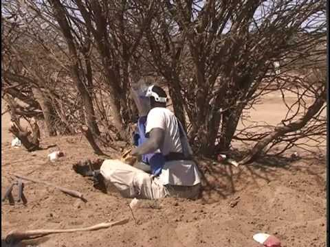 Land Mines in Somalia