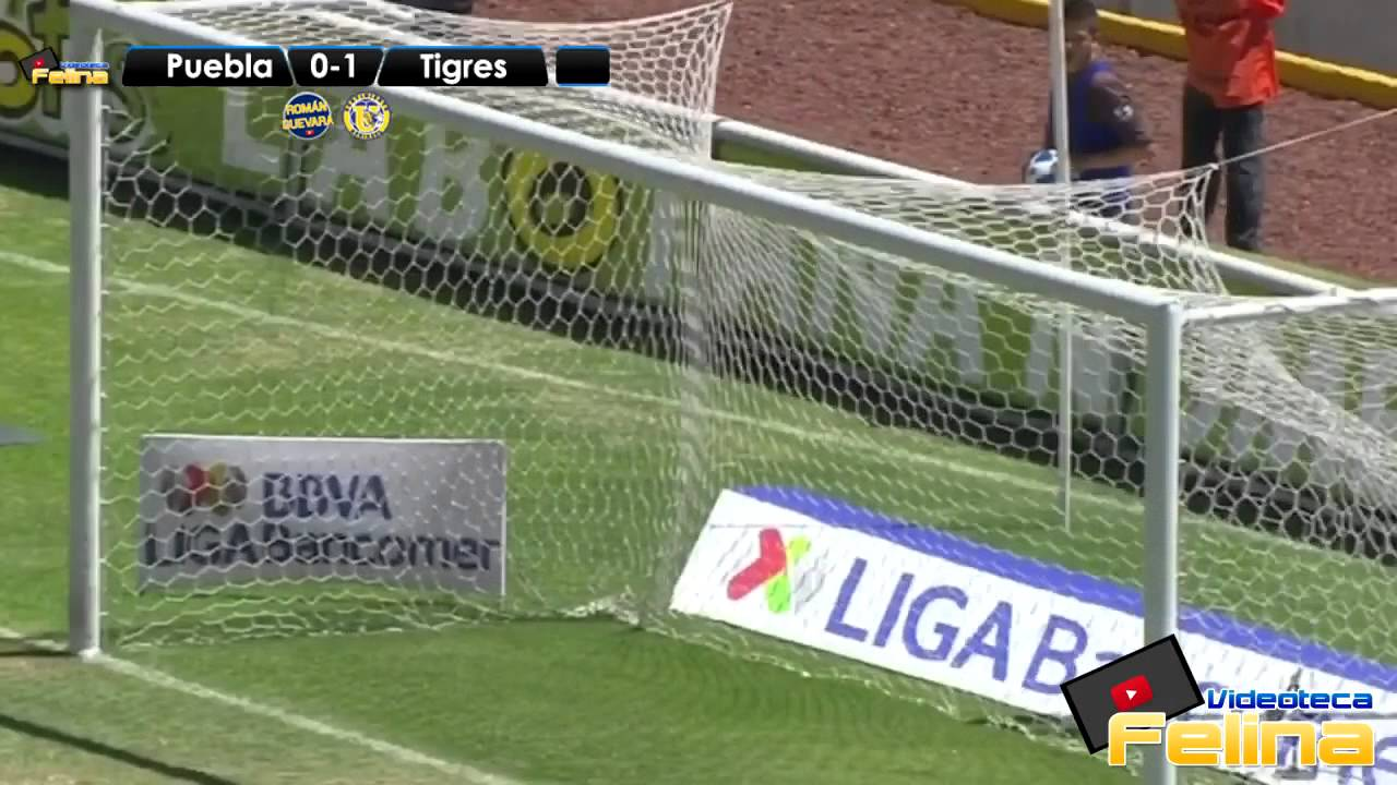 Download Goles De Los Tigres En El Clausura 2014 Liga Mx HD