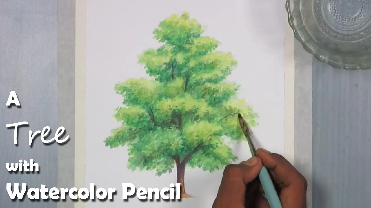 how to paint a tree with watercolor pencil youtube. Black Bedroom Furniture Sets. Home Design Ideas