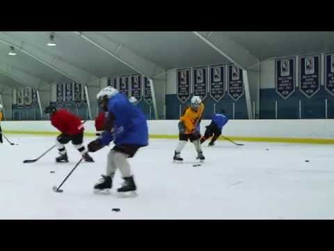 The CARTER Method  Greg Carter Hockey School