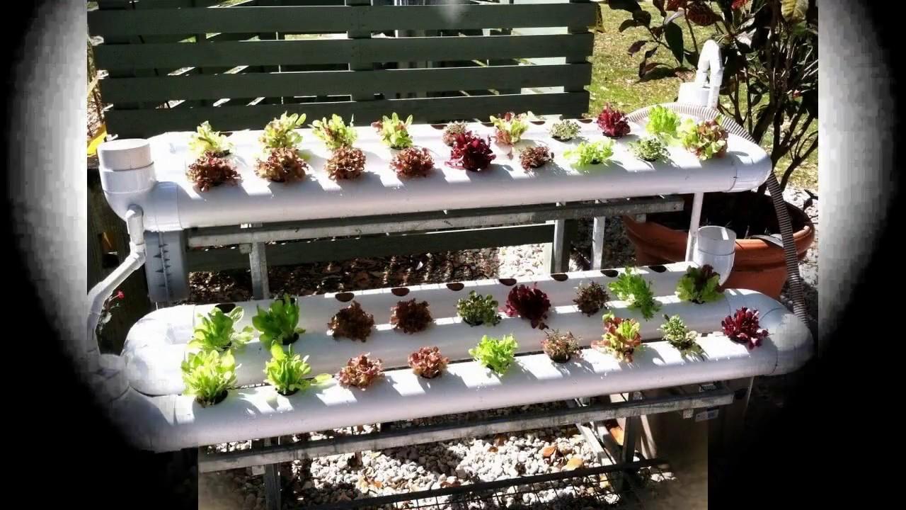 Petit jardin hydroponique youtube - Dutronc petit jardin youtube limoges ...