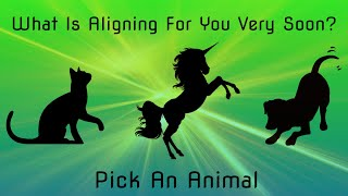💫Pick An Animal💫 What Is About To Align For You?