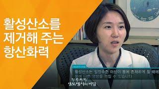 활성산소를 제거해 주는 항산화력 - (2011.7.30…