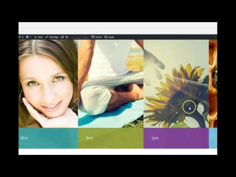 The Mind Body Spirit Network an Online Business Directory & Content Marketing Strategy