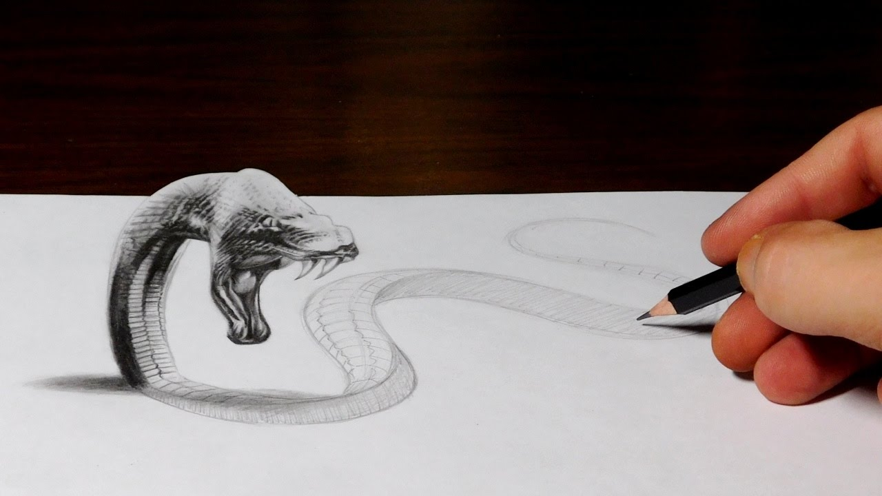 Snake Drawing Comes To Life 3d Trick Art