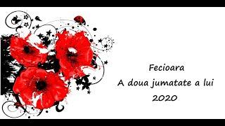 Fecioara - A doua jumatate a lui 2020