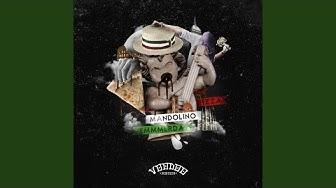 Pizza Mandolino Emmerda