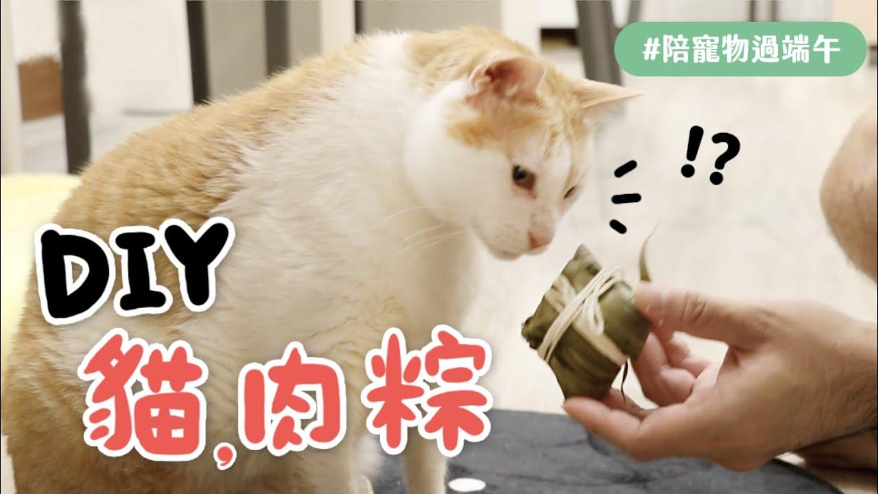 【黃阿瑪的後宮生活】DIY貓肉粽 #陪寵物過端午