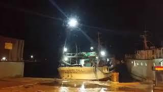 Molfetta. Le condizioni meteo della notte rendono impraticabile l'uso delle imbarcazioni