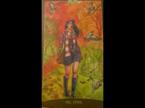 The Fool as Feelings in a Love Reading