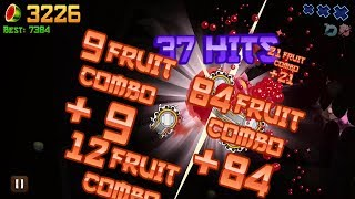 Fruit Ninja Classic Mode High Score: 7451