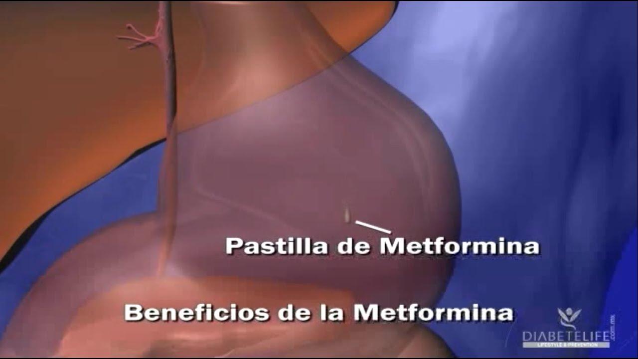 La Metformina - YouTube
