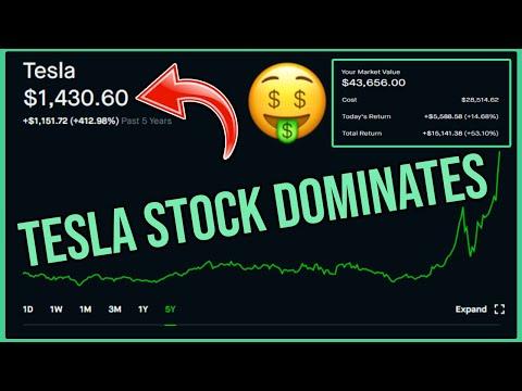 tesla-stock-made-me-so-much-money---robinhood-investing-|-tsla-stock-analysis