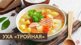 """Уха """"тройная"""""""
