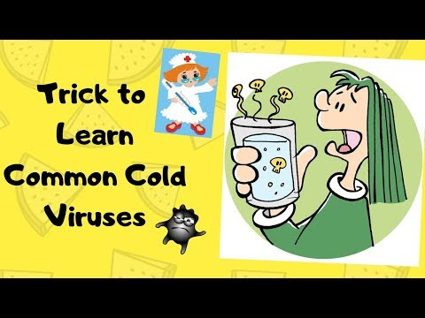 Learn Viruses Of Common Cold | Common Cold Virus