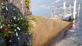 Италия: Утро на озере Комо  (смартфон-онлайн)