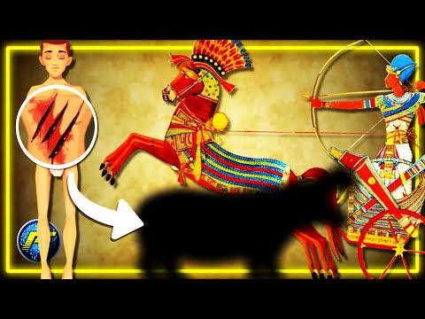 Who Was King Tut ? | Top 5 Ancient Egyptian Secrets/ Egypt 101 Animated