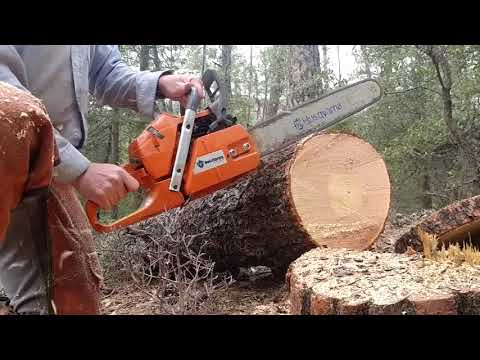 Cheap Husky and Stihl chainsaw clones/knock offs, should you