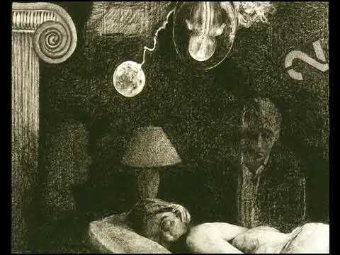 Lilium Sleep İnside Evrensel Sesler