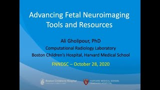 FNNDSC Lecture Series with Guest Speaker: Ali Gholipour, PhD