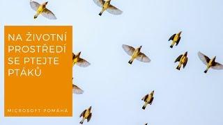 Microsoft pomáhá v České společnosti ornitologické thumbnail
