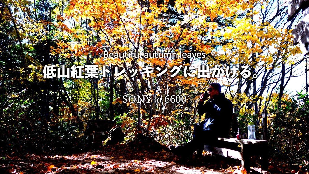 【SONY a6600】まもなく雪の降る札幌の里山で紅葉とコーヒーと鬼滅の刃
