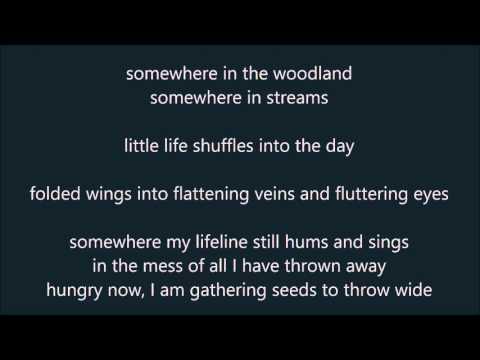 Vienna Teng - Goodnight New York - Lyrics