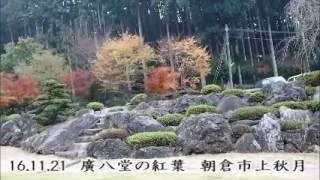 http://www.kuzu-warabi.jp/ 福岡県朝倉にある廣八堂本社庭園も色づきは...