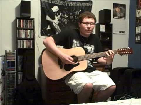 Stevie Ray Vaughan - Life By The Drop - 12 String Acoustic Cover [2013 VERSION]
