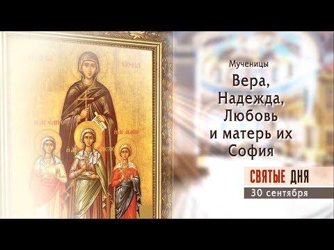 дошкольников читать онлайн мученики за веру Владимир Путин поставил