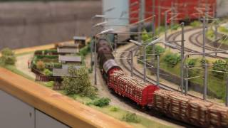 Orginaler Abrollbergbetrieb auf der Anlage des ESV Knittelfeld / marshalling yard model train