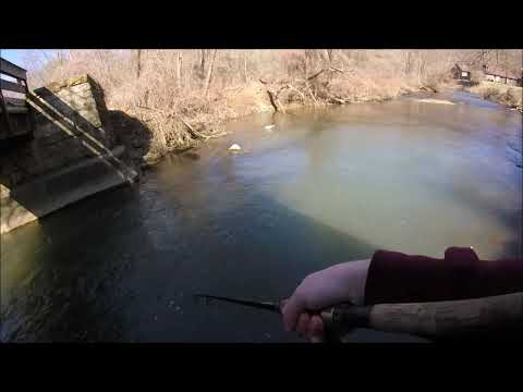 Fishing Pine Creek For Brook Trout