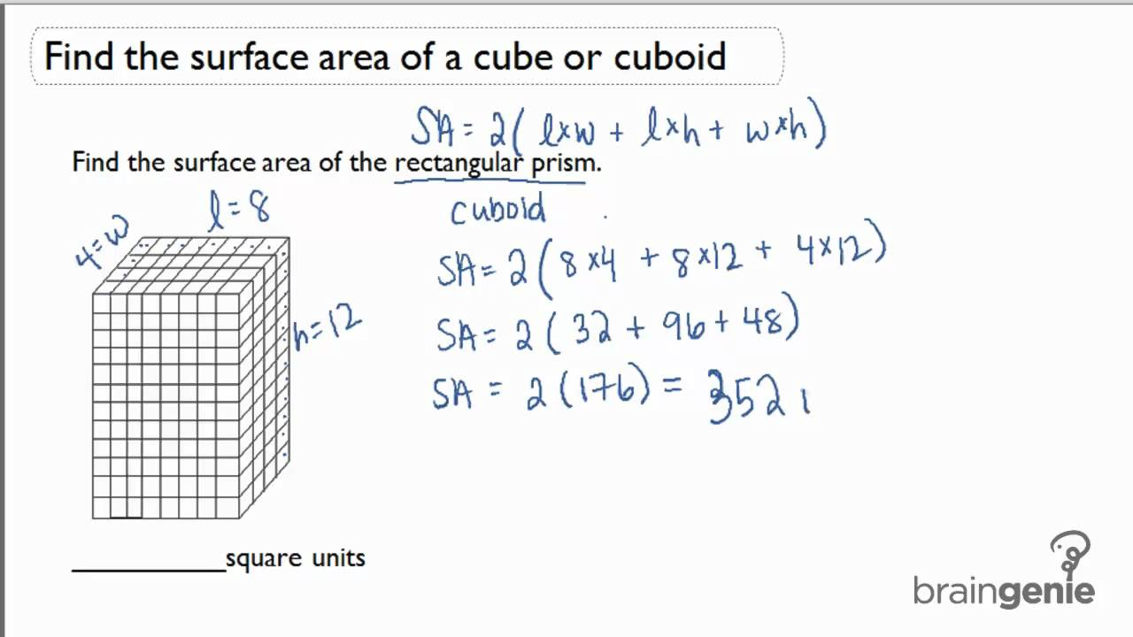 141 Find the surface area of a cube or cuboid  YouTube