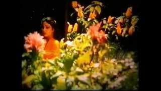 Asha Bhosle - Kismat Walon Ko Milta Hai Pyar Ke Badle Pyar - Tanha Tanha