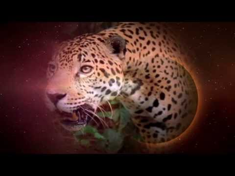The Path of Lord Jaguar - By Margaret Donnelly - Book trailer