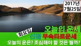 띠별 타로운세)오늘의 운세 2017년 7월25일 쥐띠운세, 소띠운세