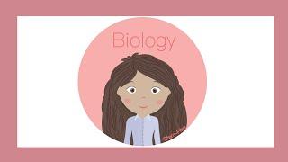 Biology - Summer of STEM - Articulated Hand Puppets