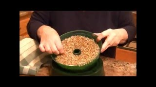 Sprouting Alfalfa Seeds 101 | Grow Your Own!