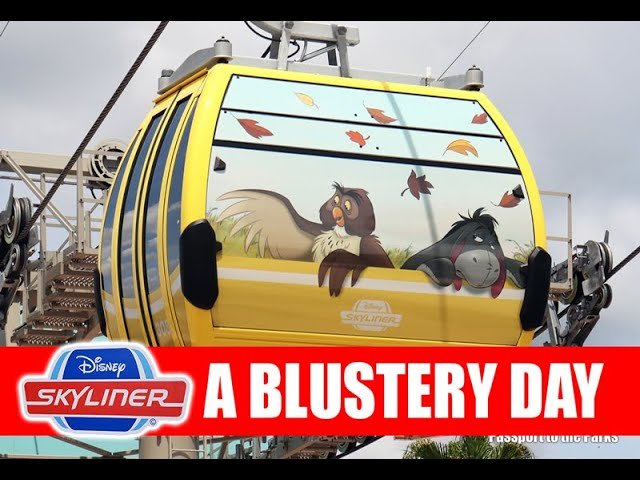 Disney Skyliner Riding Gondolas On A Cold Windy Day Full Tour All Lines