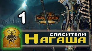 Цари Гробниц прохождение Total War Warhammer 2 за Архана Черного - #1