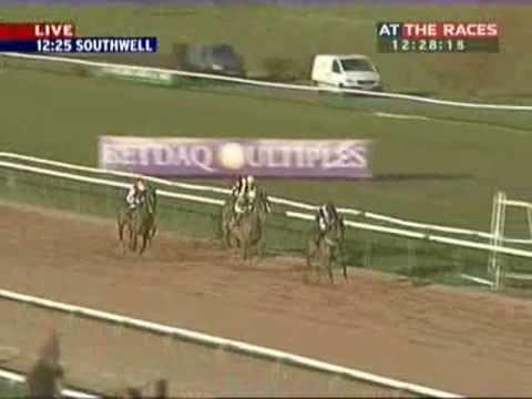 Koos Racing Club Horse Racing Syndicate