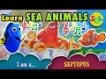 Learn SEA ANIMALS: Finding Dory Nemo Ocean Water Animals - Characters | Can You Tell Me Who You Are?