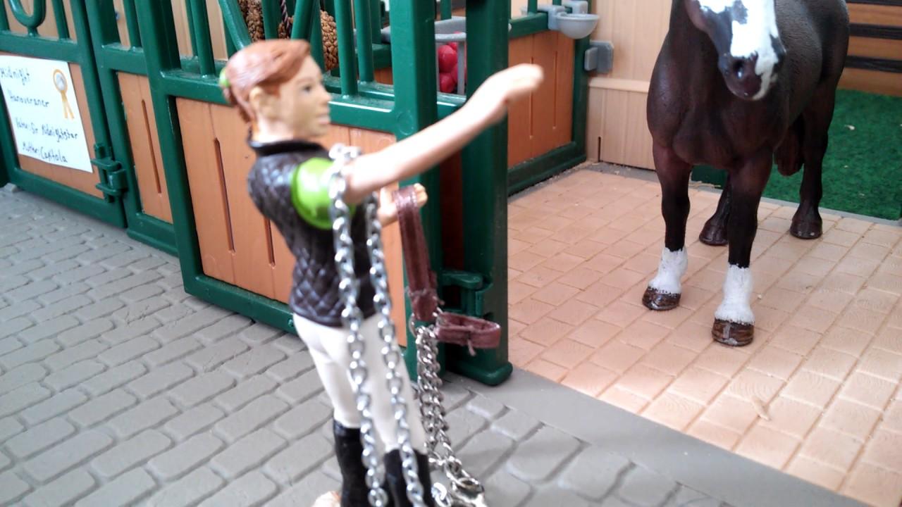 Was Reiter Denken Vs Was Pferde Denken Youtube
