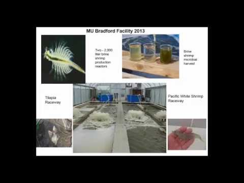 Bioprocessing of Microbial Biomass: Enabling Sustainable Zero-Discharge Seafood Production