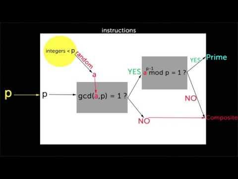 06   Randomized algorithms   05   Fermat primality test