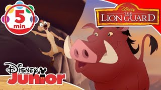 The Lion Guard | Songs From The Savannah 🎶 | Disney Junior UK