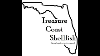 Nicolette Mariano: Sebastian Silver Oysters from Treasure Coast Shellfish