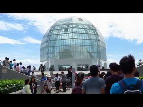 Tokyo Sea Life Park - Enjoying the holiday! (part 1)