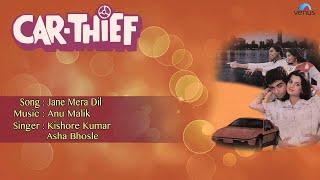 Car Thief : Jane Mera Dil Full Audio Song   Sunil Anand, Vijayeta Pandit  