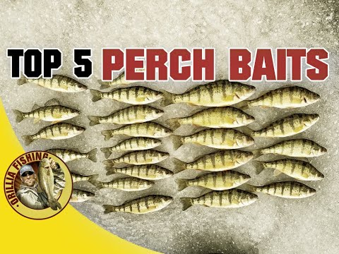 Top 5 Perch Ice Fishing Lures